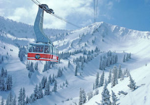 Snowbird Discount Lift Tickets. Up To $95 Off Lift Tickets Pick up your tickets & gear on your way to Snowbird! How To Buy Tickets Discount Rental Gear. Tickets available at all shops except those in the Greater Park City Area. View All Locations. Adult.